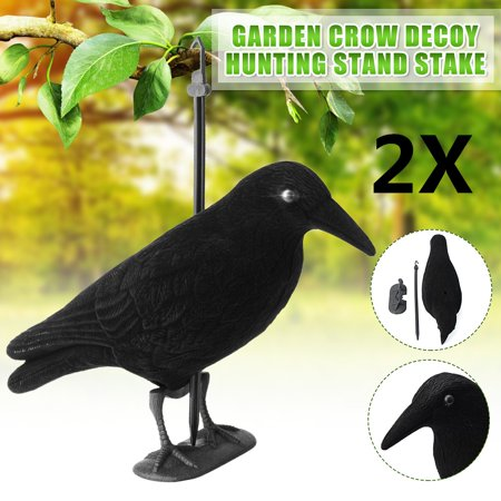 2Pcs FLOCKED CROW DECOY FULL BODY WHOLE ROOK RAVEN SHOOTING HUNTING + FEET + STAKE thumbnail