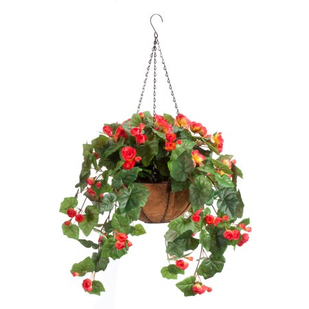 Fully Assembled Begonia Hanging Basket by OakRidgeTM Outdoor