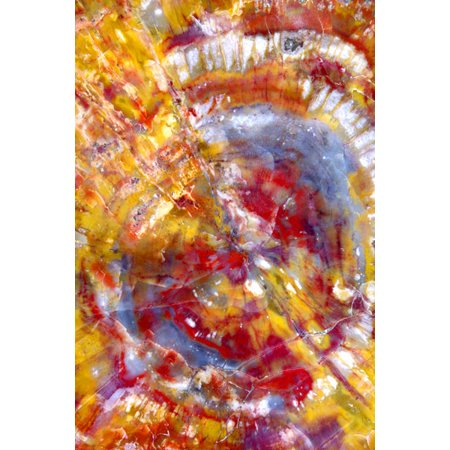 Spiral Galaxy, Fine Art Photograph By: Douglas Taylor; One 24x36in Fine Art Paper Giclee Print