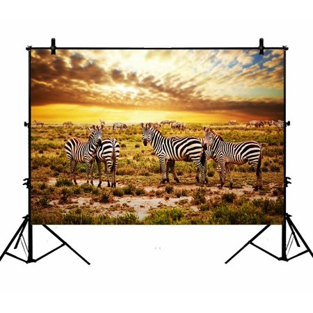 PHFZK 7x5ft Beautiful Sky Cloud Backdrops, Safari Zebras Herd on Savanna at Sunset, Africa Photography Backdrops Polyester Photo Background Studio Props](Jungle Safari Backdrop)