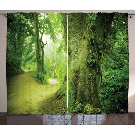 Fairy Curtains 2 Panels Set, Enchanted Forest Photograph with Fantastic Ancient Trees Pathway to Adventure Nature Wild, Window Drapes for Living Room Bedroom, 108W X 108L Inches, Green, by (Enchanted Fairy Forest)