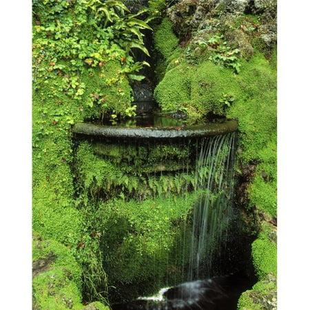 Japanese Garden Powerscourt Gardens Co Wicklow Ireland - Fern & Moss Around A Fountain Poster Print by The Irish Image Collection, 24 x 32 - Large