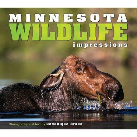 Impressions (Farcountry Press): Minnesota Wildlife Impressions (Paperback) Minnesota Wild Memorabilia