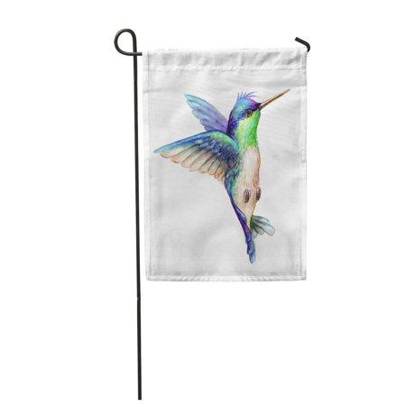 LADDKE Blue Watercolor Flying Hummingbird Exotic Tropical Wild Life Clip Colorful Garden Flag Decorative Flag House Banner 12x18 - Hummingbird Clip