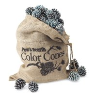 Color-Changing Fireplace Color Cones 5 lb. Refill Bag