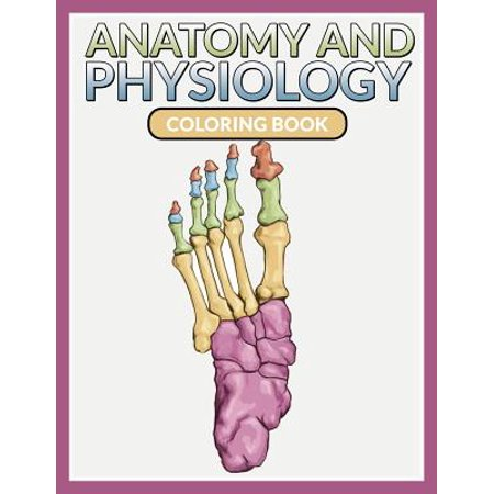Anatomy and Physiology Coloring Book - Walmart.com