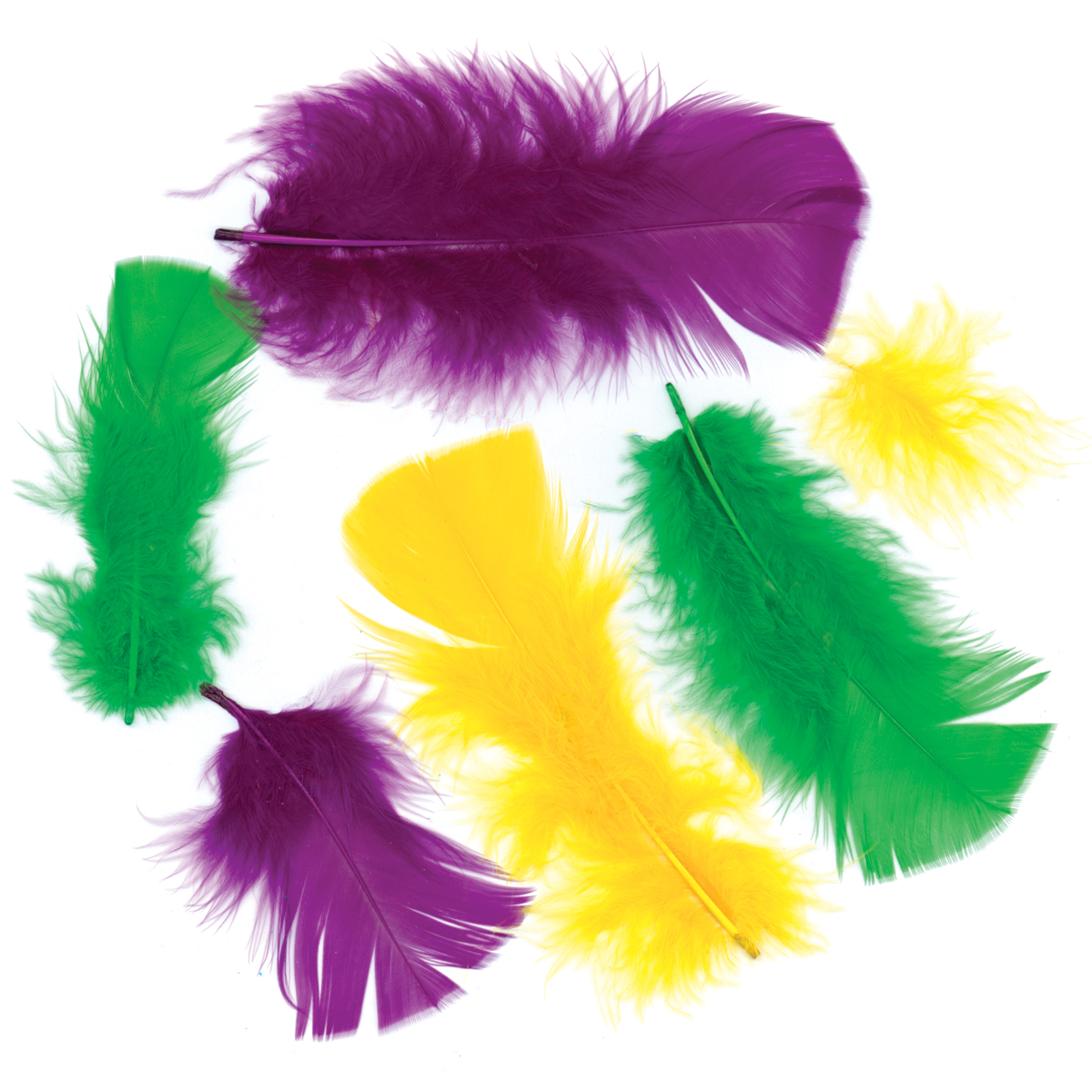 Turkey Plumage Feathers .5oz-Purple, Gold & Green