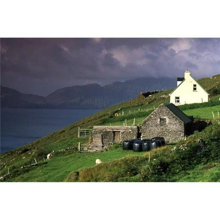 Beara Peninsula County Cork Ireland - Rustic Farmhouses On Hill Poster Print by Richard Cummins, 19 x 12 - image 1 de 1