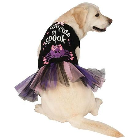 Halloween Costume Dog (Too Cute To Spook Halloween Dog)
