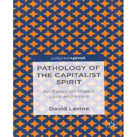 Pathology Of The Capitalist Spirit  An Essay On Greed  Hope  And Loss