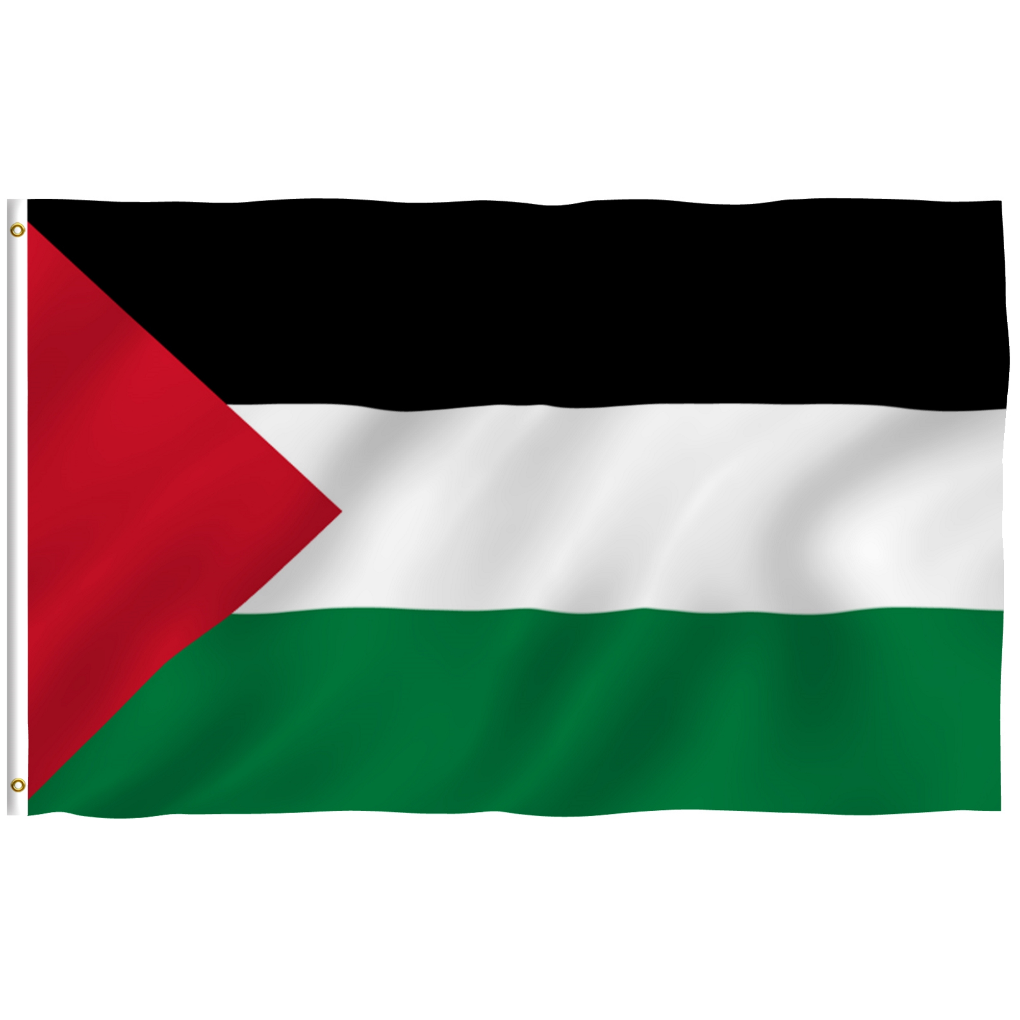 ANLEY [Fly Breeze] 3x5 Foot Palestine Flag - Vivid Color and UV Fade Resistant - Canvas Header and Double Stitched -Palestinian Flags Polyester with Brass Grommets 3 X 5 Ft