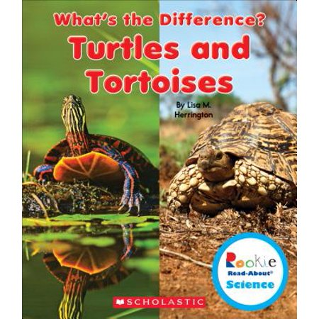 Turtles and Tortoises (Difference Between Turtle And Tortoise In English)