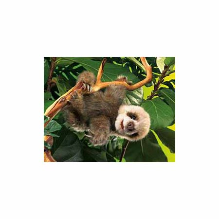 Baby Sloth Hand Puppet by Folkmanis - 2927