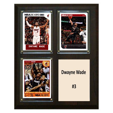C&I Collectables NBA 8x10 Dwayne Wade Miami Heat 3-Card (Dwayne Wayne)