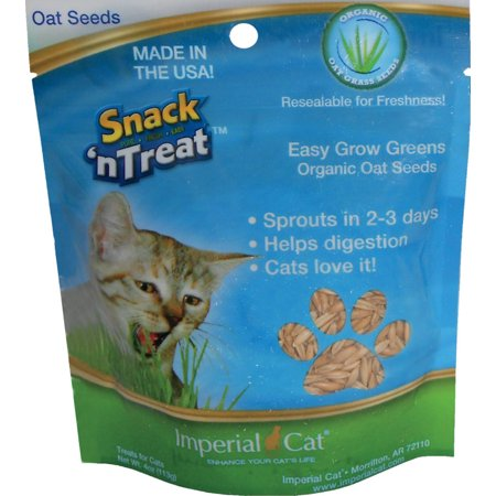 Imperial Cat 4 oz. Easy Grow Oat Seeds