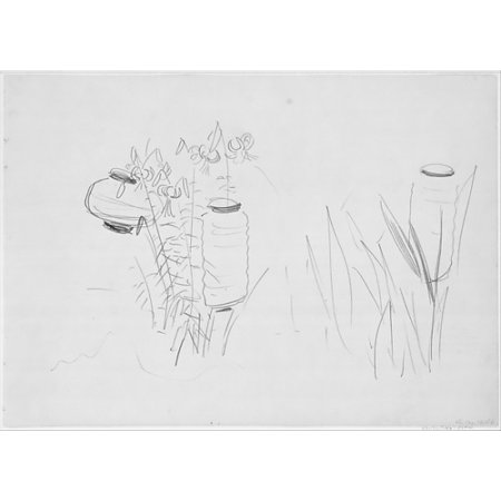 """Japanese Lanterns and Lilies Study for Carnation Lily Lily Rose Poster Print by John Singer Sargent (American Florence 1856  """"1925 London) (18 x"""