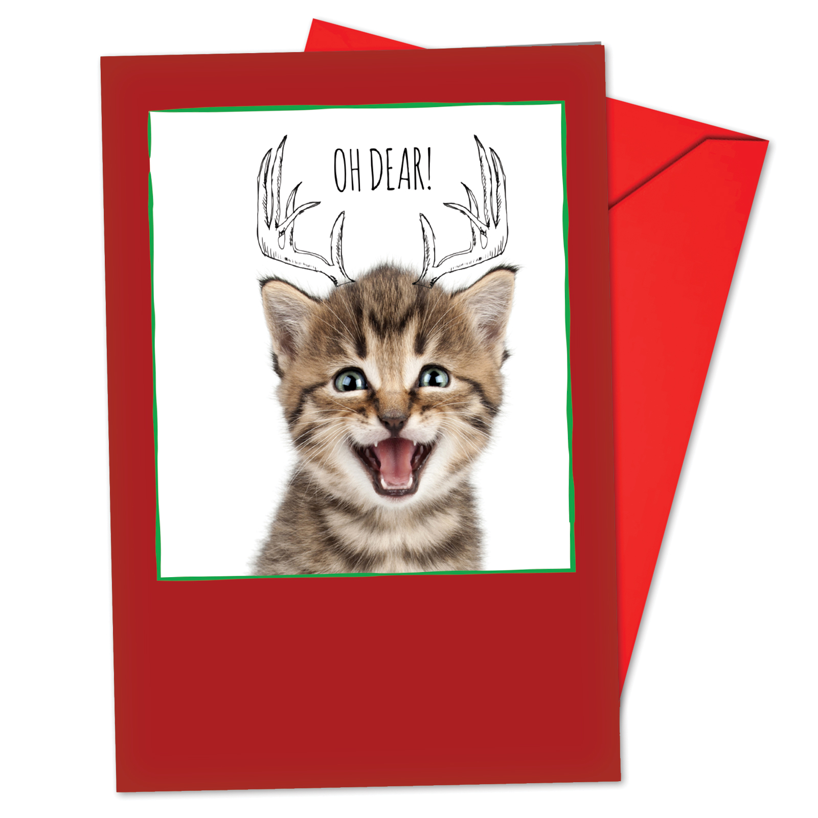 'B6583GXSG Cats & Doodles Christmas Cards' Box Set of 12 Hilarious Merry Christmas Notecards with Envelopes by NobleWorks