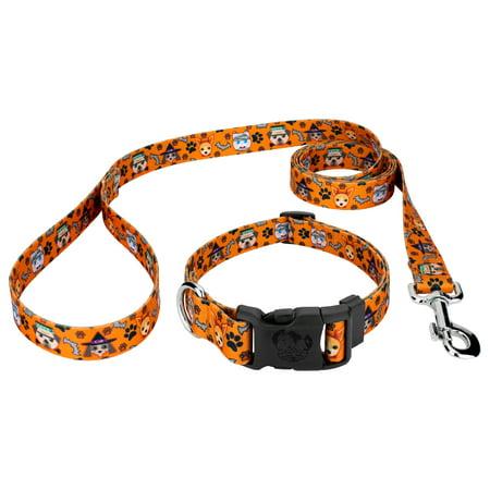 Country Brook Petz® Frightening Furbabies Deluxe Dog Collar & Leash
