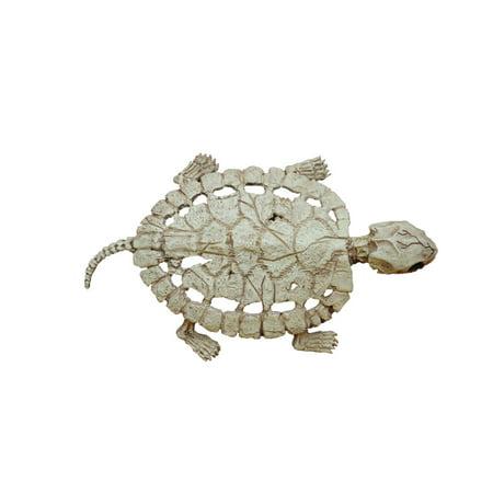 Jack Skeleton Halloween Decorations (Skeleton Turtle Halloween)