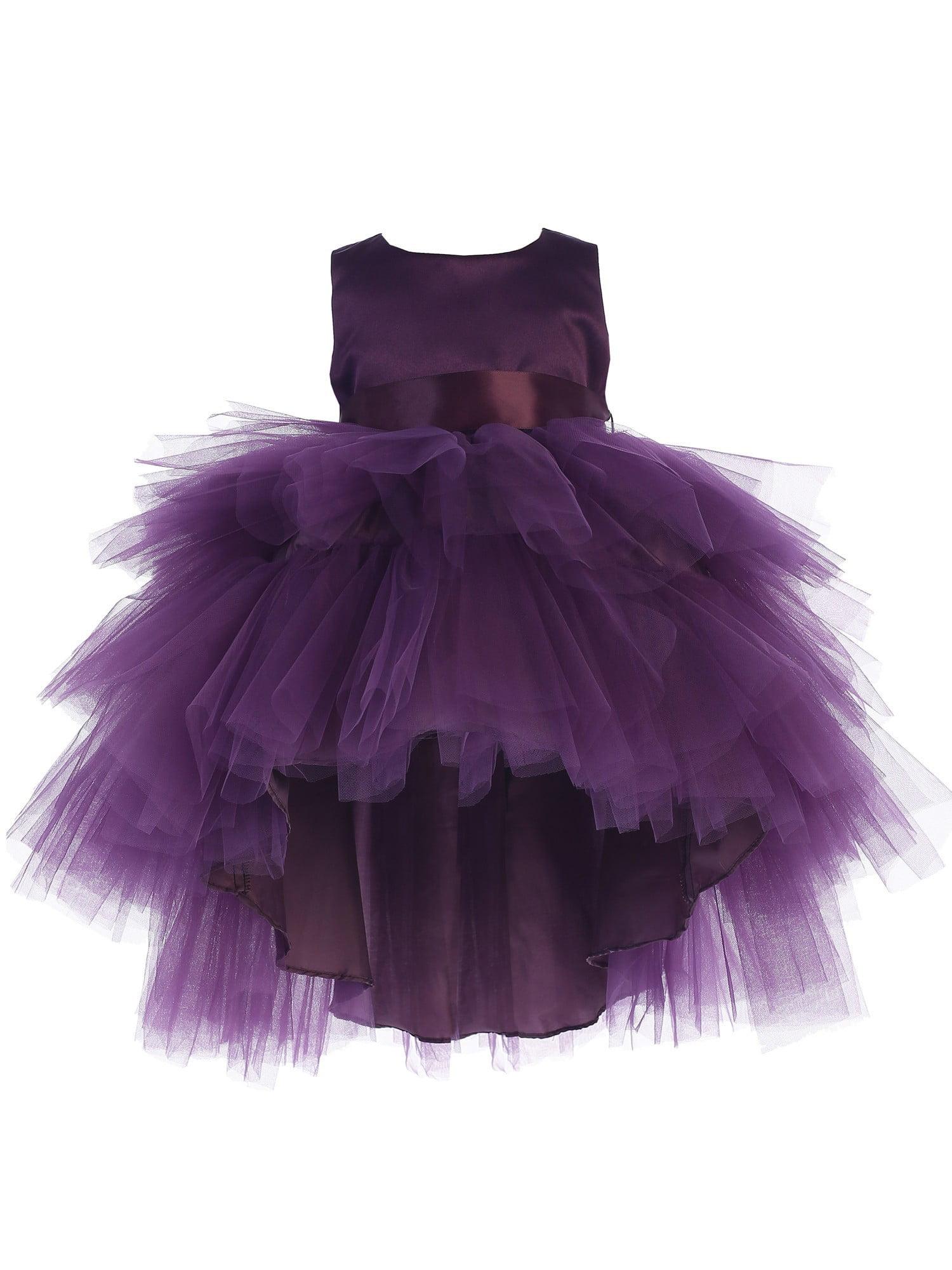 Eggplant Ruffles Tulle High-Low Dress