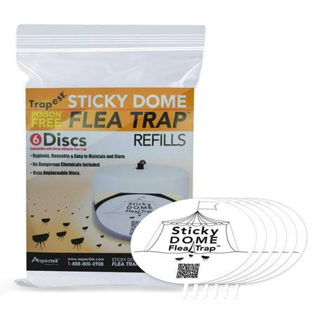 Aspectek Sticky Dome Flea Trap Refill (Dome Trap)