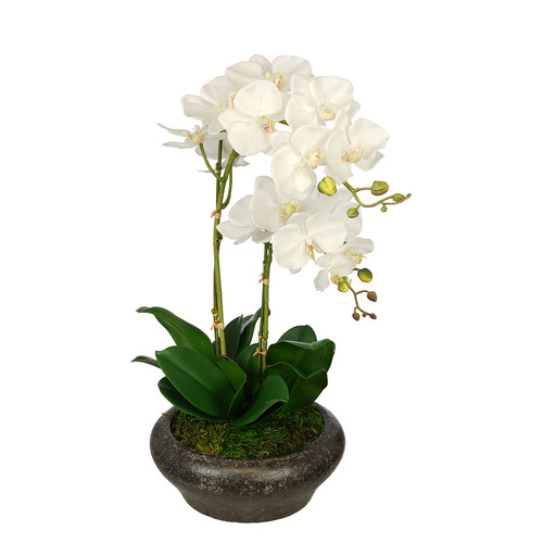 House of Silk Flowers Inc. Artificial Double Stem Orchid in Stone Bowl