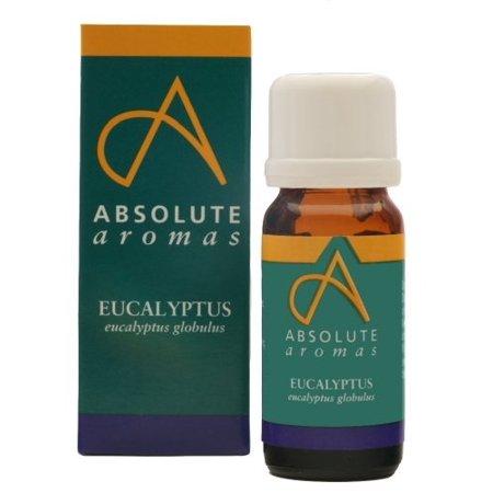 Absolute Aromas Eucalyptus Globulus Essential Oil