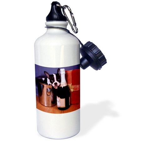- 3dRose Boston Terrier Satine, Sports Water Bottle, 21oz