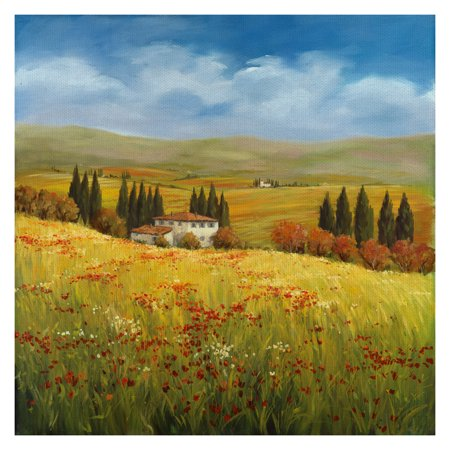 Masterpiece Art Gallery Lo Splendor De La Toscana Field Of Italy By Tim Howe Canvas Art Print 35