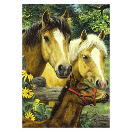 Toland Home Garden Horse Family Flag (Horde Flag)