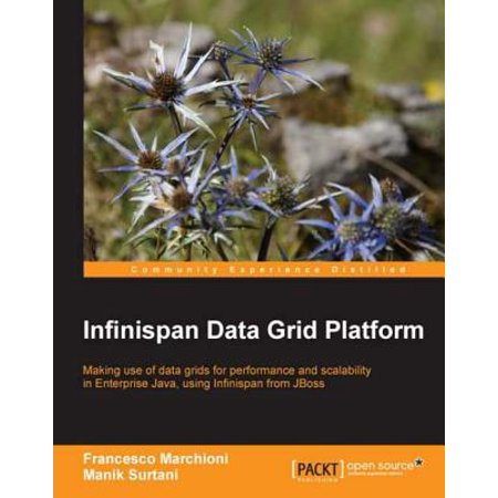 Infinispan Data Grid Platform - eBook