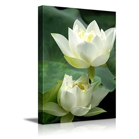 Canvas Prints Wall Art White Lotus Flower And Green Lotus Leaf