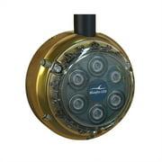 Bluefin Led DL6 White Dock Light - 2500 Lumens - 12VDC DL6-SM-W108