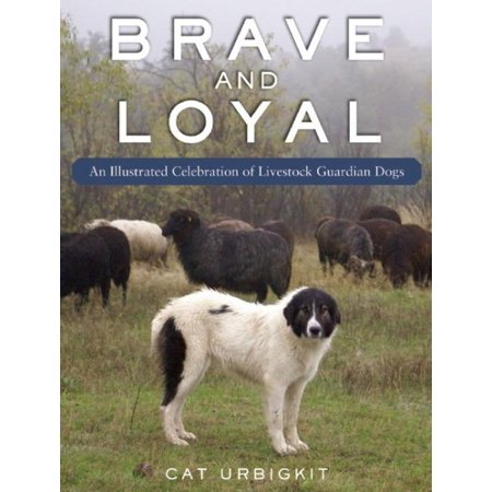 Brave And Loyal