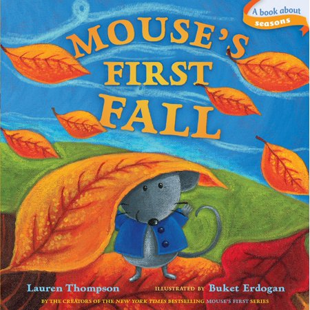 Mouses 1st Fall (Board Book) - It's Halloween You Fraidy Mouse Book