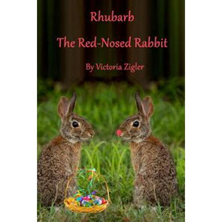 Rhubarb The Red-Nosed Rabbit - eBook - Animal With Pig Nose And Rabbit Ears