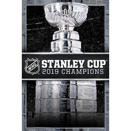 2019 Stanley Cup Champions: St. Louis Blues (DVD)