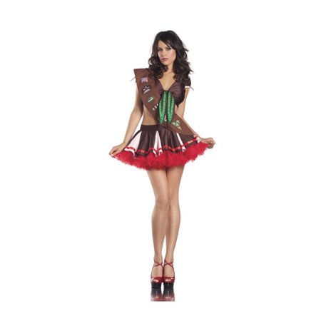 Sexy Brownie Girl Costume Be Wicked BW1202 (Halloween S'mores Brownies)