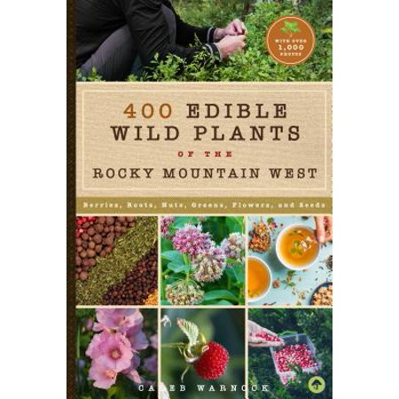 437 Edible Wild Plants of the Rocky Mountain West : Berries, Roots, Nuts, Greens, Flowers, and Seeds Bierstadt The Rocky Mountains