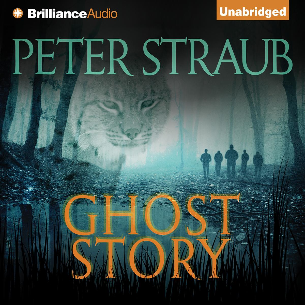 Ghost Story - Audiobook