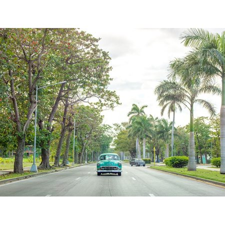 Vintage Car On A Road With Palm Trees Cuba Poster Print by Assaf