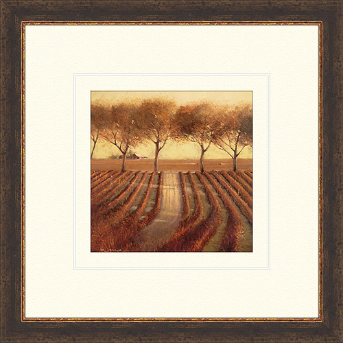 Vineyard Vista Framed Art, I