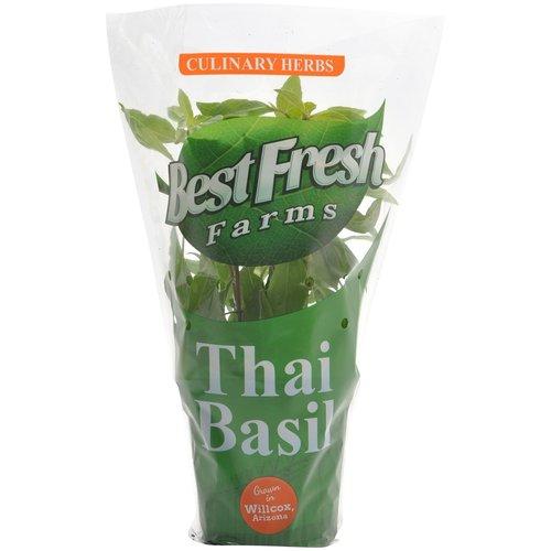 how to keep thai basil fresh