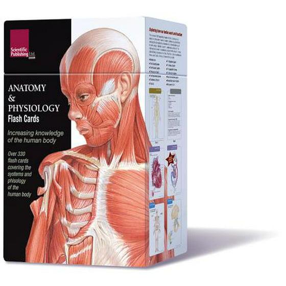 Anatomy Physiology Flash Cards Walmart
