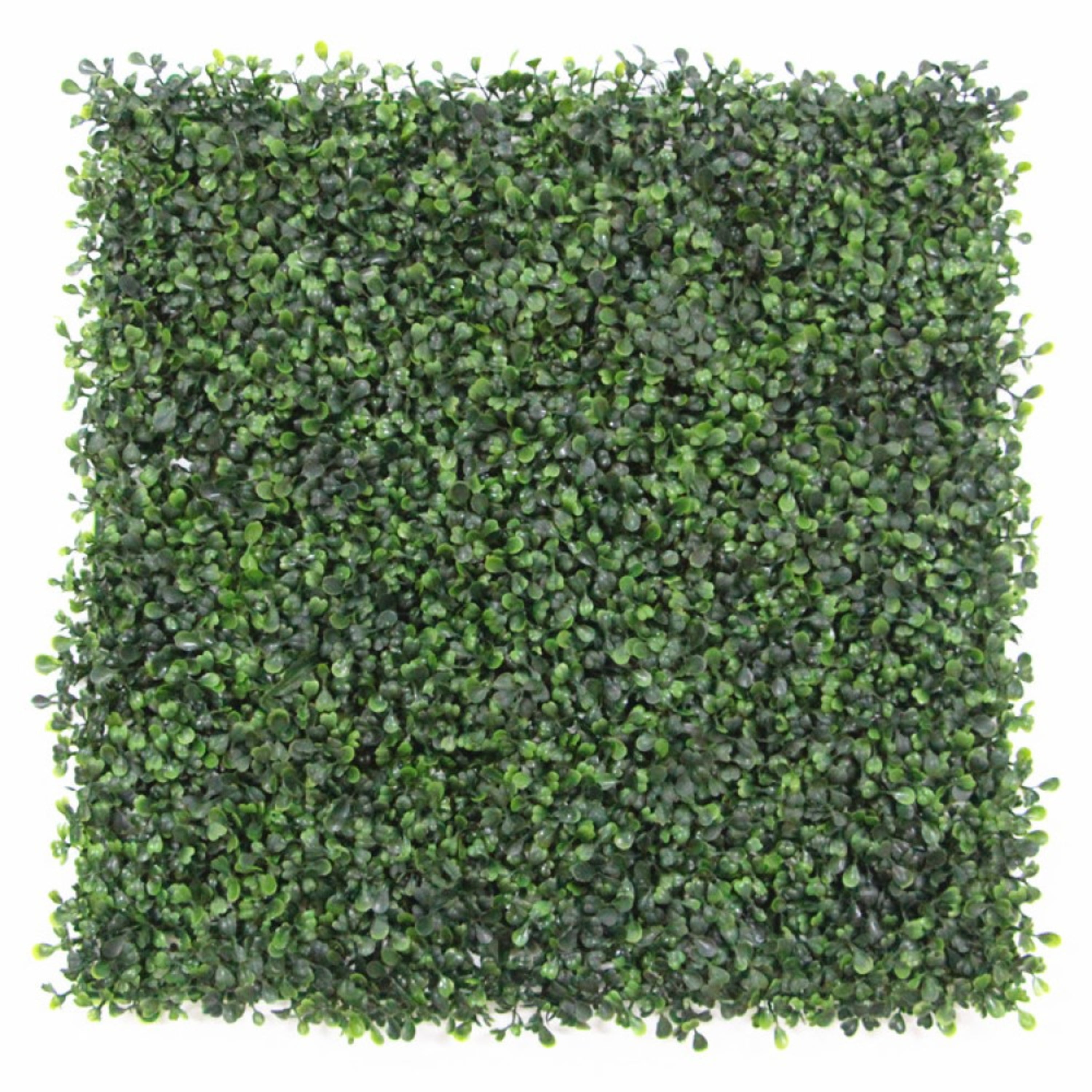 Terrific Artificial Boxwood Hedge Privacy Hedge Screen Uv Protected Pabps2019 Chair Design Images Pabps2019Com