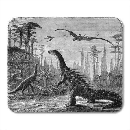 KDAGR Dinosaurs Stegosaurus and Compsognathus in Araucaria Landscape Vintage Engraved Mousepad Mouse Pad Mouse Mat 9x10 - Engraving Landscape