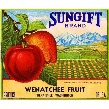 Wenatchee Washington Sungift Scenic Apples Apple Fruit Crate Box Label Art  Print
