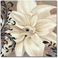 "Trademark Fine Art ""Winter White II"" Canvas Art by Color Bakery"