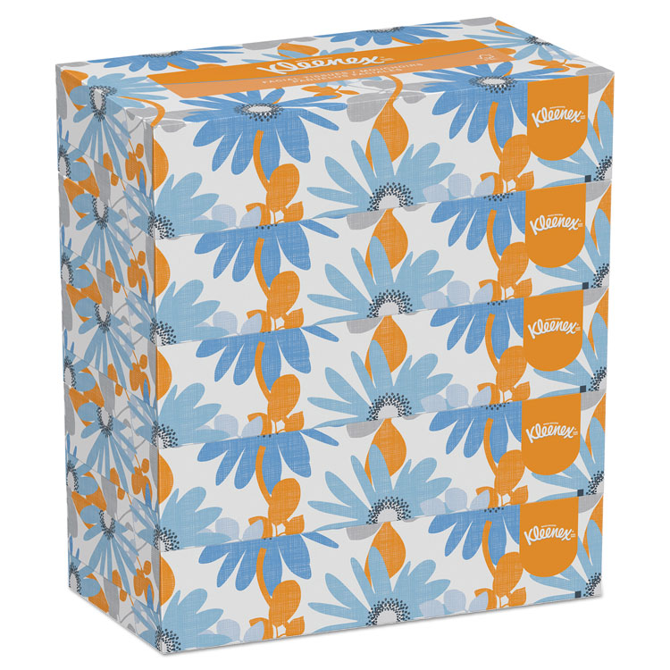 White Facial Tissue, 2-Ply, 100 Tissues/box, 5 Boxes/pack, 6 Packs/carton