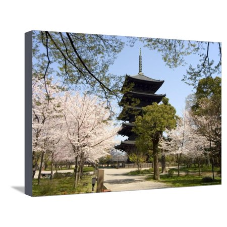 Toji Pagoda, Unesco World Heritage Site, Spring Cherry Blossom, Kyoto City, Honshu Island, Japan Stretched Canvas Print Wall Art By Christian Kober - Party City Official Site